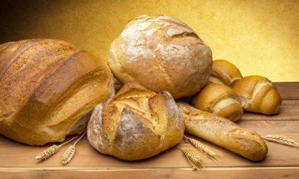 Lo spreco del pane e una app