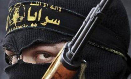 Video falsi, sconfitte e divisioni Perché si dice che Isis sia in crisi