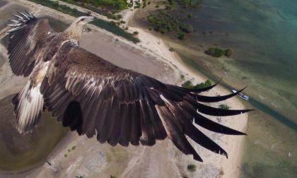 Foto mozzafiato scattate dai droni