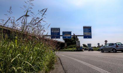 A4, lo svincolo di Bergamo Immagini di un'ordinaria follia
