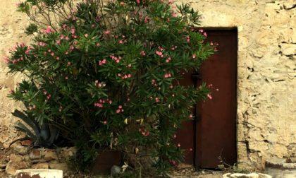 La porta del faro – Giovanna Ravasio