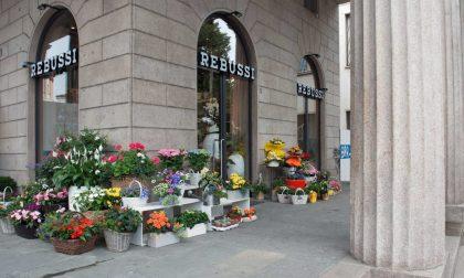 Rebussi, fiori nel cuore di Bergamo