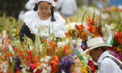 Medellin fiorisce d'agosto