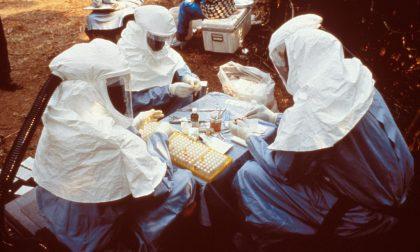 A che punto è l'epidemia di Ebola