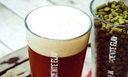 Elav a Comun Nuovo la birra si fa come piace a noi