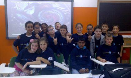 La Scuola Primaria di Telgate e la sua matematica nei girasoli