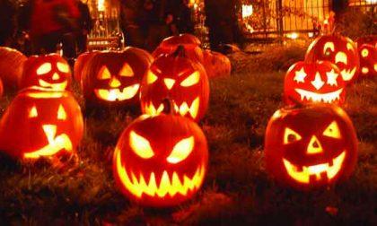Dolcetto o scherzetto? La vera storia di Halloween
