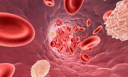 Come tenere a bada il colesterolo anche se è una questione di geni