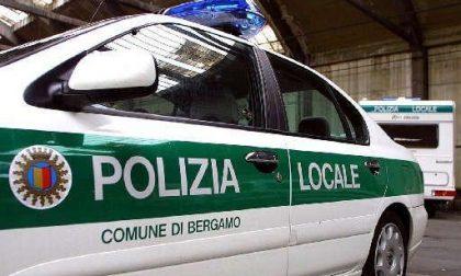 Notizie su Bergamo e provincia (2-7 febbraio)