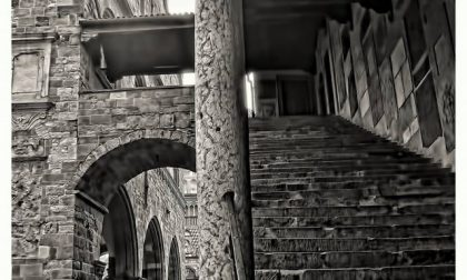 Poesie a gradini – Armando Genovese