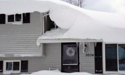 Nevica (tanto) sull'America le immagini in atmosfera natalizia