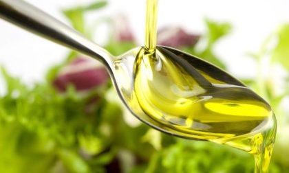 Quanto fa bene l'olio d'oliva che previene anche il tumore