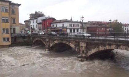 Notizie su Bergamo e provincia (3-8 novembre)