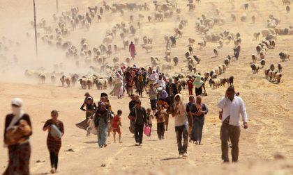Yazidi, la liberazione di Sinjiar