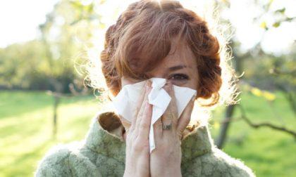 Perché prendiamo il raffreddore