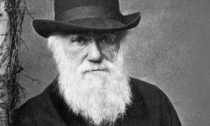 Oggi è il Darwin Day. Cioè?