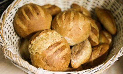 Zero Bakery in via Palazzolo Dove il pane è fatto come si deve