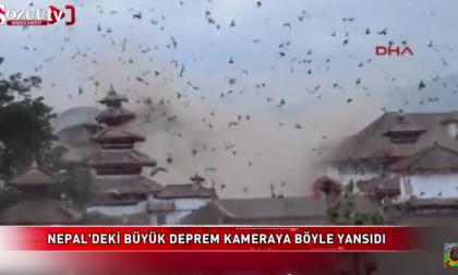 Gli uccelli impazziti e le macerie Il video del sisma a Katmandu