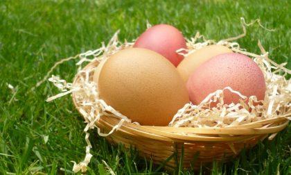 10 frasi dei bergamaschi a Pasqua