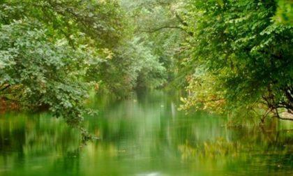 Le sei riserve naturali bergamasche Un meraviglioso patrimonio verde