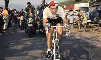 Merckx, che oggi ne compie 70 e fa ancora 7mila km all'anno