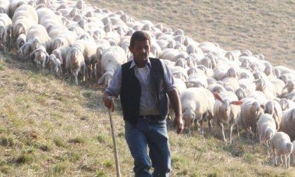«La sapete una cosa? Fare il pastore è un dono»