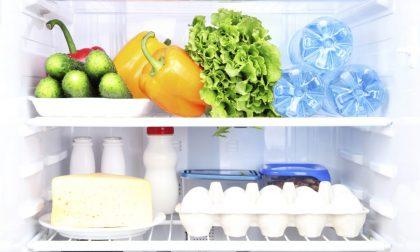 Come organizzare il frigorifero in dieci infallibili passaggi