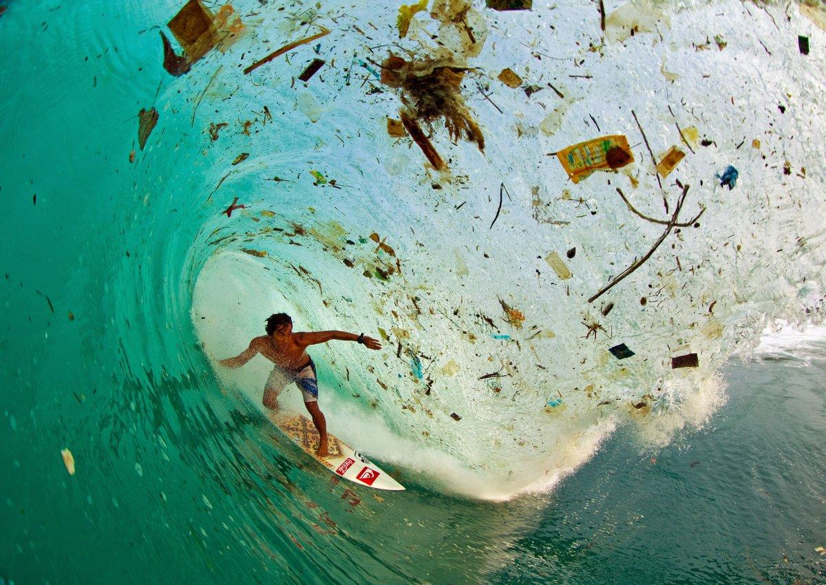 surf indonesiaù