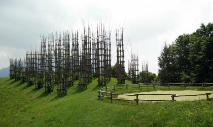 Oltre il Colle, la cattedrale vegetale: una meraviglia con un cuore d'oro