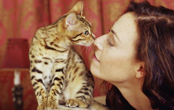 news_img1_61002_donna-e-gatto