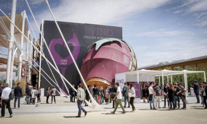 A Expo c'è pure il vino buono Un tour nel padiglione dedicato