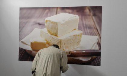 La mostra Formae ad Astino dove il formaggio è un'opera d'arte