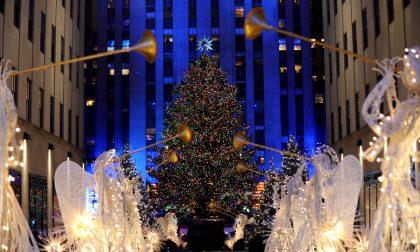 L'albero del Rockefeller Center e il suo sconosciuto papà ciociaro