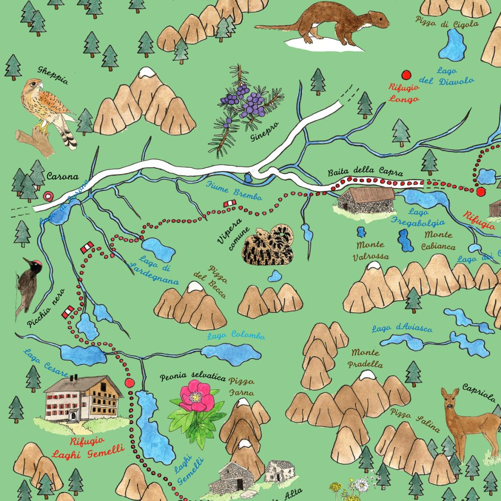 Mappa illustrata del sentiero delle orobie, di Susanna Alberti
