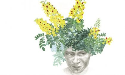 Pau Brasil di Margherita Leoni La natura rinasce attraverso l'arte