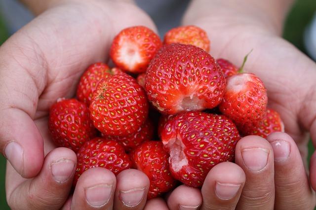 strawberries-862615_640