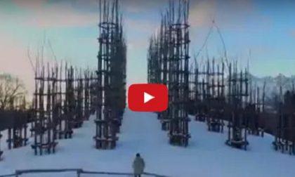 La magia della cattedrale vegetale Un video d'incanto dall'Arera
