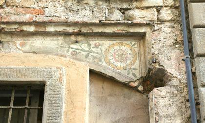 I fiori nascosti sui muri di Bergamo