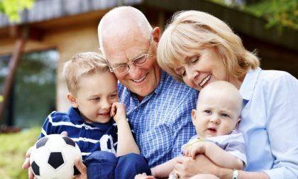 7C che fan bene a nonni e nipoti (e una è coccole, ovviamente)