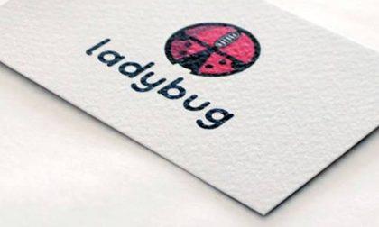 Ladybug, un'azienda di successo. Avere vent'anni e idee ben chiare