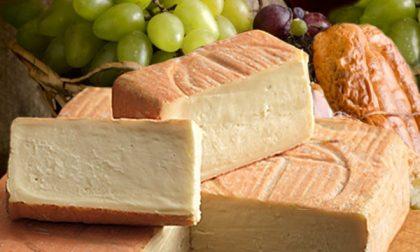Allo studio un piano regionale da 6 milioni di euro per acquistare formaggi e vini locali