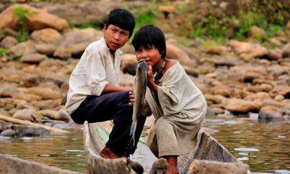 Gli Tsimané della foresta boliviana che non soffrono di mal di cuore