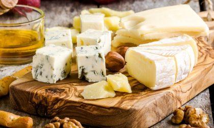 Il formaggio non fa ingrassare (parola di scienziati irlandesi)