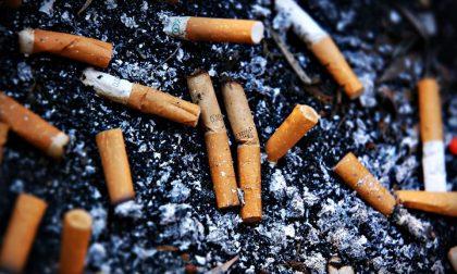 Sigarette abbandonate per terra Insetticida naturale dai mozziconi
