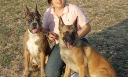 Il gran fiuto del cane Akima lo porterà fino in Slovenia