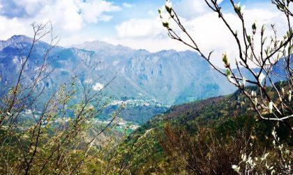 Verso la Val Serina - Silvia
