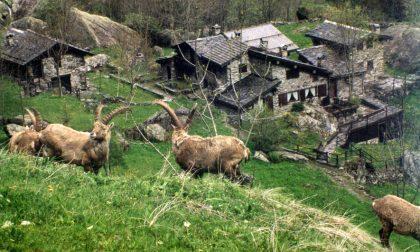Il weekend nelle valli orobiche #26 Tutti gli eventi da non perdere