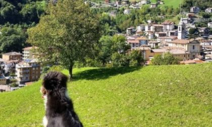 San Pellegrino Terme - Roberta Gherardi