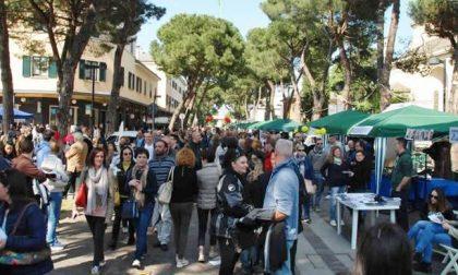 Exponiamo Dalmine, la kermesse che celebra i commercianti