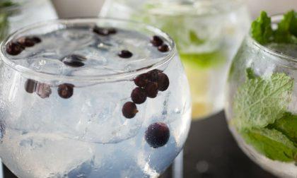 Anche il Gin Tonic ha un festival (fatto ad arte)